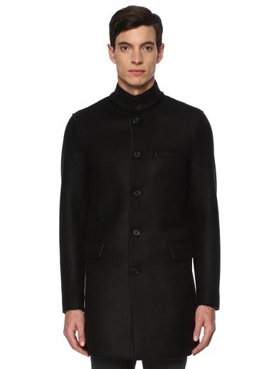 Que Palto Siyah